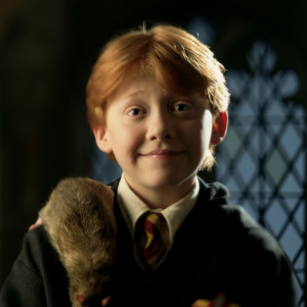 Harry Potter Ron Weasley close-up